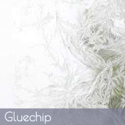 Glue Chip Patterned Cabinet Glass